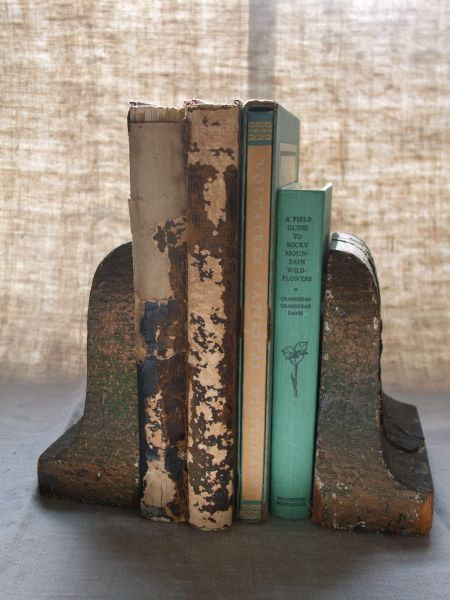 Beautifully weathered old books.